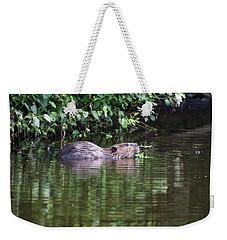 beaver swims in NC lake Weekender Tote Bag