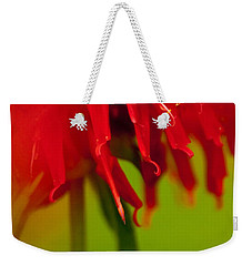 Bee Balm Abstract Weekender Tote Bag by Jani Freimann