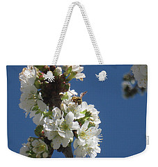 Bee On Cherry Blossoms Weekender Tote Bag