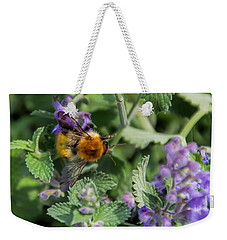 Weekender Tote Bag featuring the photograph Bee Too by David Gleeson