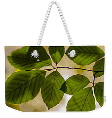 Beech Leaves And Bokeh Weekender Tote Bag by Jan Bickerton