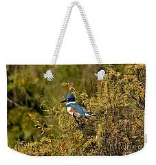 Belted Kingfisher Female Weekender Tote Bag by Anthony Mercieca