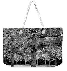 Benches In The Park Weekender Tote Bag