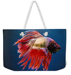 Betta Fish 2 Weekender Tote Bag by Lisa Brandel