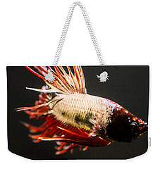 Betta Fish 3 Weekender Tote Bag by Lisa Brandel