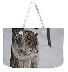 Big Bad Wolf Weekender Tote Bag