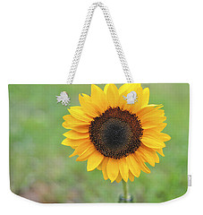 Big Bright Yellow Colorful Sunflower Art Print Weekender Tote Bag