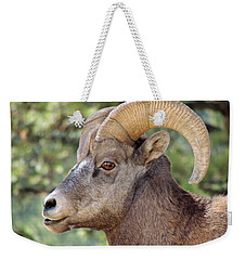 Weekender Tote Bag featuring the photograph Big Horn by Lynn Sprowl