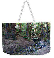 Bigfoot On Mt. Tamalpais Weekender Tote Bag