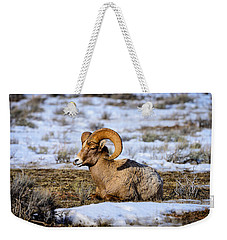 Weekender Tote Bag featuring the photograph Bighorn Sheep by Greg Norrell