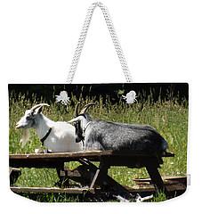 Billy Goats Picnic Weekender Tote Bag by Brenda Brown