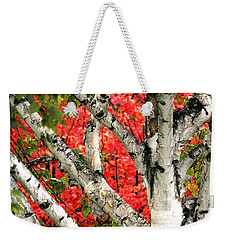 Weekender Tote Bag featuring the photograph Birch Eclipsing Maple by Doris Potter