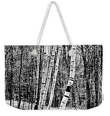 Weekender Tote Bag featuring the photograph Birch Sentinels by Kristen Fox