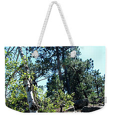 Weekender Tote Bag featuring the photograph Birch Trees by Dany Lison