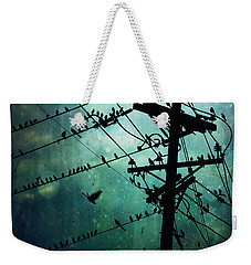 Bird City Weekender Tote Bag by Trish Mistric