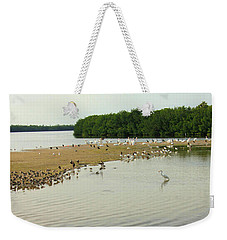 Weekender Tote Bag featuring the photograph Bird Experience by Rosalie Scanlon