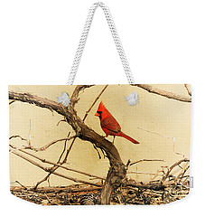 Weekender Tote Bag featuring the photograph Bird On A Vine by Jayne Wilson