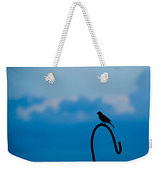 Weekender Tote Bag featuring the photograph Bird Silhouette  by Dee Dee  Whittle