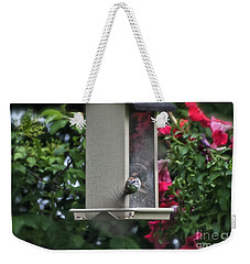 Weekender Tote Bag featuring the photograph Bird Time To Fly by Thomas Woolworth