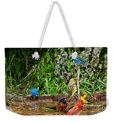 Birds Bathing Weekender Tote Bag by Anthony Mercieca