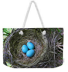 Birds Nest American Robin Weekender Tote Bag by Christina Rollo