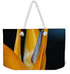Weekender Tote Bag featuring the photograph Birds Of Paradise by Matt Harang