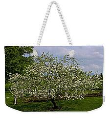Weekender Tote Bag featuring the painting Birth Of Apples by John Haldane