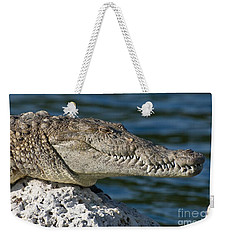 Weekender Tote Bag featuring the photograph Biscayne National Park Florida American Crocodile by Paul Fearn