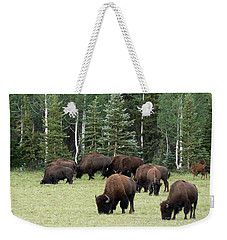 Bison At North Rim Weekender Tote Bag