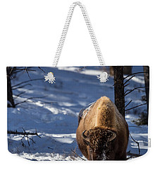 Weekender Tote Bag featuring the photograph Bison In Winter by Michael Chatt