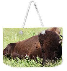 Bison Nap Weekender Tote Bag by Alyce Taylor