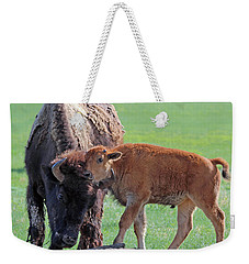 Weekender Tote Bag featuring the photograph Bison With Young Calf by Bill Gabbert