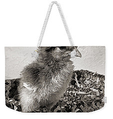 Black And White Baby Chicken Weekender Tote Bag