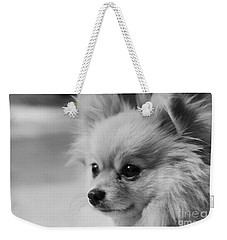 Black And White Portrait Of Pixie The Pomeranian Weekender Tote Bag