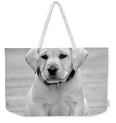 Black And White Puppy Weekender Tote Bag