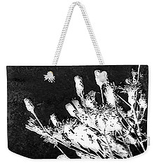 Weekender Tote Bag featuring the photograph Black And White Wildflower by Shawna Rowe