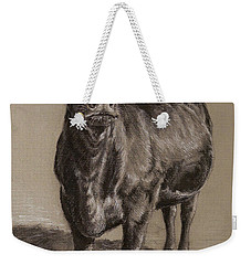 Black Angus Cow 1 Weekender Tote Bag