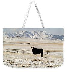 Black Baldy Cows Weekender Tote Bag