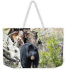 Weekender Tote Bag featuring the photograph Black Bear by Michael Chatt