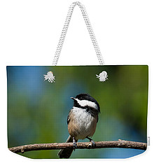 Black Capped Chickadee Perched On A Branch Weekender Tote Bag