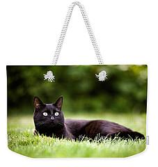 Black Cat Lying In Garden Weekender Tote Bag