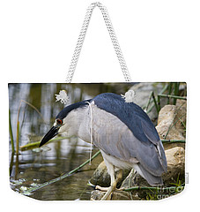 Weekender Tote Bag featuring the photograph Black-crown Heron Going Fishing by David Millenheft
