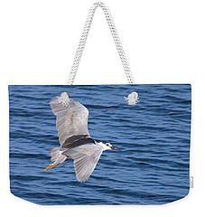 Black Crowned Night Heron In Flight Weekender Tote Bag