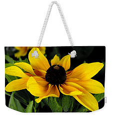 Black Eyed Susan  Weekender Tote Bag by James C Thomas