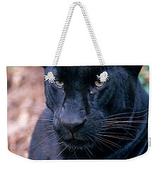Black Leopard Weekender Tote Bag by Mark Newman