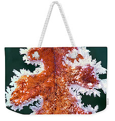 Weekender Tote Bag featuring the photograph Black Oak Leaf Rime Ice Yosemite National Park California by Dave Welling