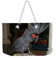 Weekender Tote Bag featuring the photograph Black Palm Cockatoo by Sergey Lukashin