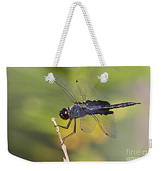 Weekender Tote Bag featuring the photograph Black Saddlebags by Bryan Keil