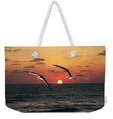 Weekender Tote Bag featuring the photograph Black Skimmers At Sunset by Tom Janca