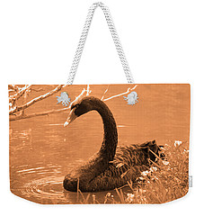 Weekender Tote Bag featuring the photograph Black Swan by Leticia Latocki